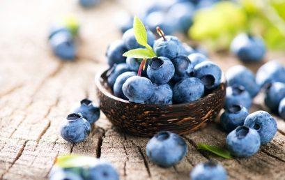 Toan tu duy – Những món hoa quả dành riêng để giải nhiệt mùa hè